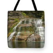 Enfield Falls Tompkins County New York Tote Bag