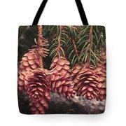 Engelmann Spruce Cones Tote Bag