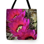 Engleman's Hedgehog Cactus  Tote Bag