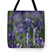 English Bluebells In Bloom Tote Bag