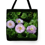English Daisies Tote Bag