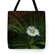 English Daisy Tote Bag