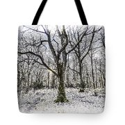 English Forest Snow Art Tote Bag