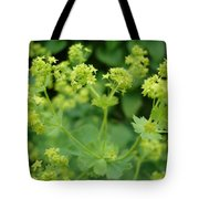 English Ladys Mantle Tote Bag