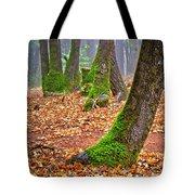Enjoying The Forest Of Oak Run Tote Bag