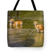 Enjoying The Water 2 Tote Bag
