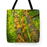 Enlightened Trees Tote Bag