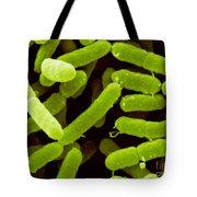 Enterobacter Sakazakii Tote Bag