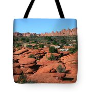 Entrada Sandstone Formations - Arches National Park Tote Bag