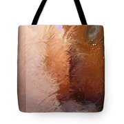 Entrance 2 Tote Bag