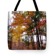Entrance To A Mahayana Buddhist Temple Tote Bag
