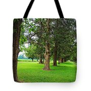 Entrance To The Past Tote Bag
