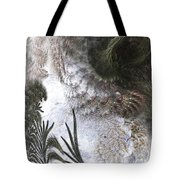 Environmental Transitions Tote Bag