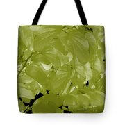 Epiphnay 1 Tote Bag