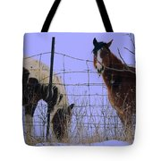 Equestrian Beauties Tote Bag