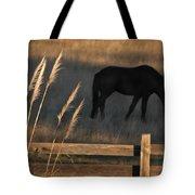Equine Evening N. California Tote Bag