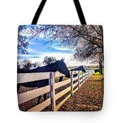 Equine Profiles Tote Bag