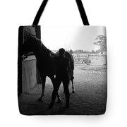 Equus Sapien IIi Tote Bag