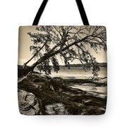 Erosion - Anselized Tote Bag