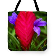Eruption Tote Bag by Melanie Moraga