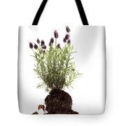 Essential Oil Of Spanish Lavender Tote Bag