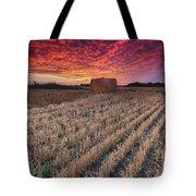 Essex Hay At Sunrise Tote Bag
