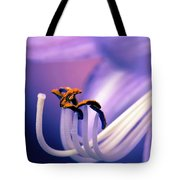 Eternal Seductiveness Tote Bag