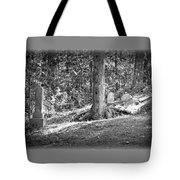 Eternity In The Woods Tote Bag