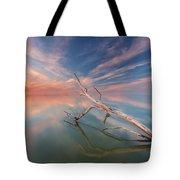Ethereal Plane Tote Bag