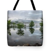 Ethereal Reflections Tote Bag