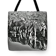 Etosha Pan Reflections Tote Bag