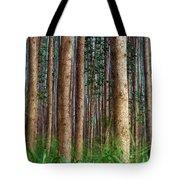 Eucalyptus Forest Tote Bag