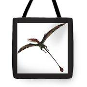 Eudimorphodon On White Tote Bag