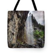 Eugenia Falls Tote Bag