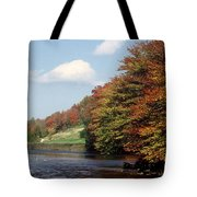 Ingliss - Fall Tote Bag