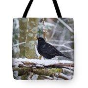 Eurasian Blackbird In The Snow Tote Bag