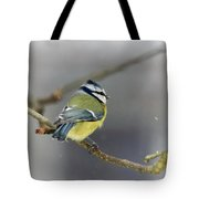 Eurasian Blue Tit With Snow Tote Bag