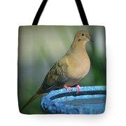 Mourning Dove On Birdbath Tote Bag