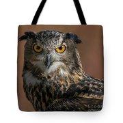 Eurasian Eagle Owl Iv Tote Bag