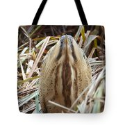 European Bittern Tote Bag