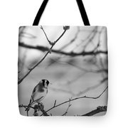 European Goldfinch 1 Tote Bag