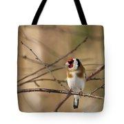 European Goldfinch 3 Tote Bag