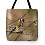 European Goldfinch 5 Tote Bag