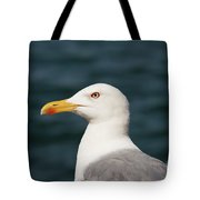 European Herring Gull Portrait Tote Bag