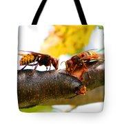 European Hornets Tote Bag