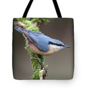 European Nuthatch Tote Bag