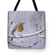 European Robin On Snowy Branch Tote Bag