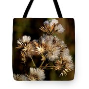 Even After Death Tote Bag