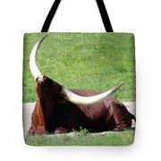 Even Animals Love The Sunshine Tote Bag