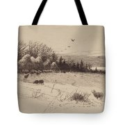 Evening After The Storm Tote Bag
